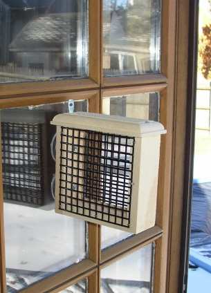 Conservation Window Suet Feeder