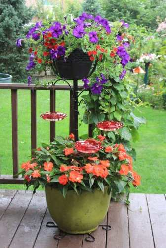 Best Container Garden Hummingbird Pole Set