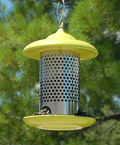 Bird Stop Ceramic Feeder Lime Green