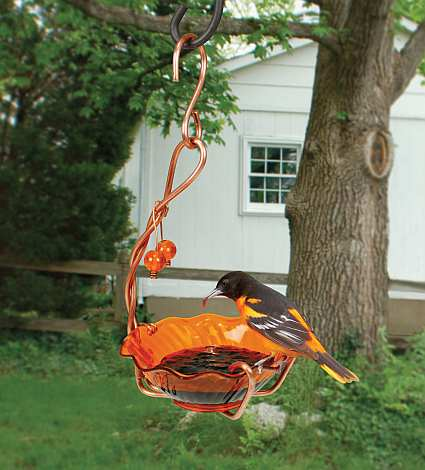 Copper Oriole Jelly Feeder Single Cup