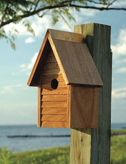 Starter Home Mahogany Bird House