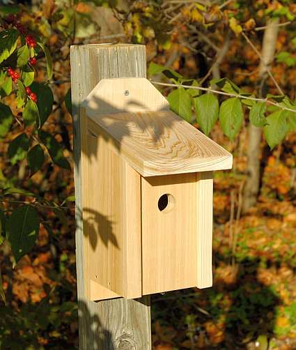 Cypress Joy Box For Wrens, Titmice and Nuthatches