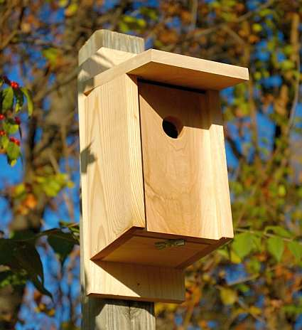 Cypress Joy Box For Eastern Bluebirds