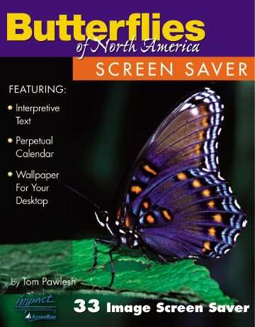 Butterflies of North America Screen Saver