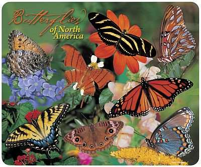 Butterflies of North America Mouse Pad