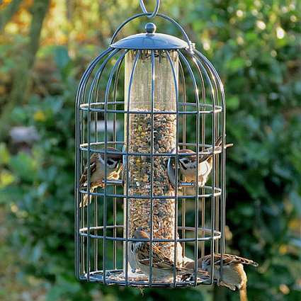 Nuttery Classic Extra Large Seed Feeder