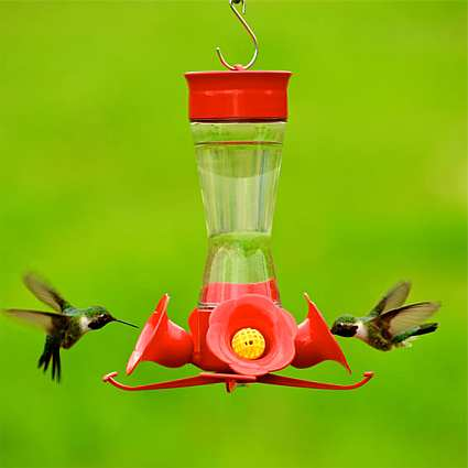 Four Flower Fountain Hummingbird Feeder 2/Pack