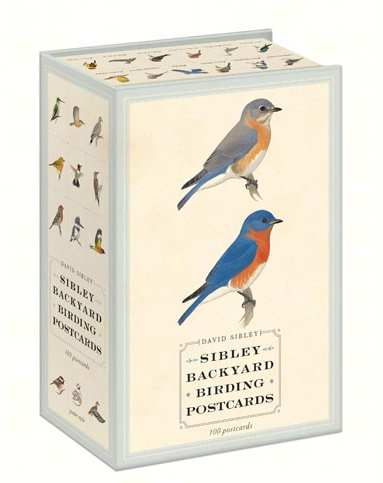 Sibley Backyard Birding Post Cards Set of 100