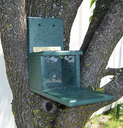 Rubicon Recycled Plastic Squirrels Only Feeder