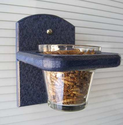 Songbird Recycled Poly Mealworm Window Feeder