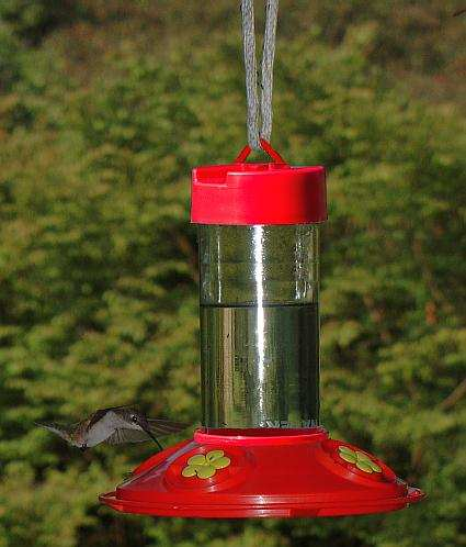Dr. JB's 16oz Clean Hummingbird Feeder Red/Yellow