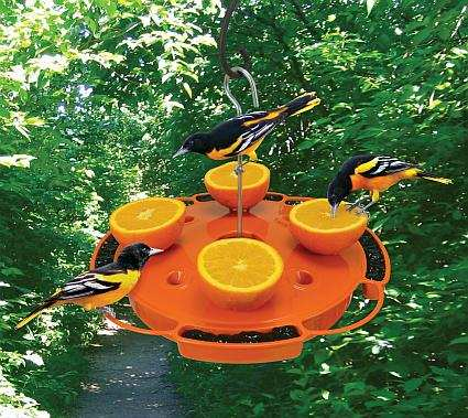 Songbird Ultimate Oriole Feeder