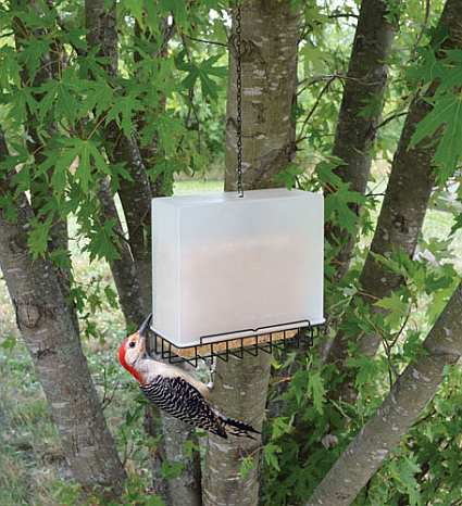 Songbird Suet Saver Feeder Large Twin Pack