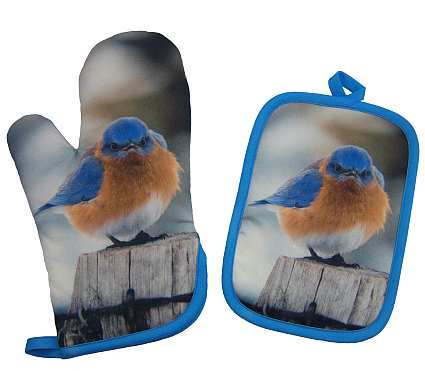 Mad Bluebird Potholder and Oven Mit Set
