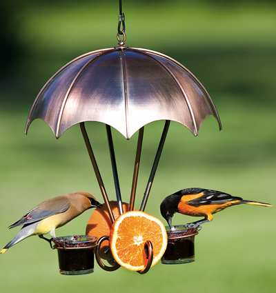 Audubon Brushed Copper Oriole Feeder