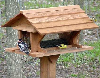 Cedar Bird Feeder Plans 187 Woodworktips
