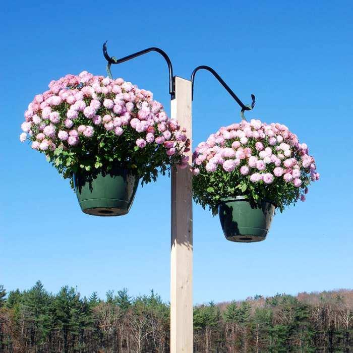 Garden Planters, Plant Stands, Trellises And Supports, Handcrafted Garden  Planters And Plant Supports At Songbird Garden