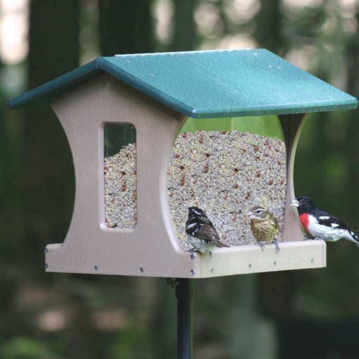 Songbird Garden Wild Bird Supplies Outdoor Living Nature Gifts