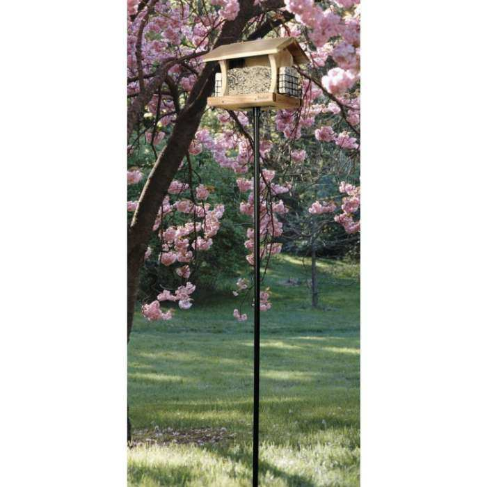 Bird Feeder Stations And Pole Sets Quality Crafted Birding Poles At Songbird Garden