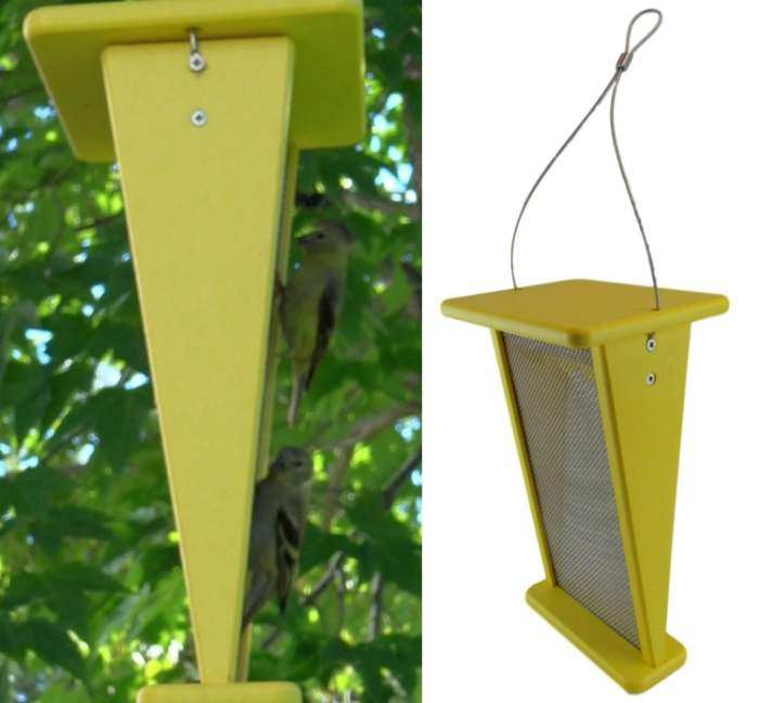 bird at thistle backyard wild birds p finch no feeder metal
