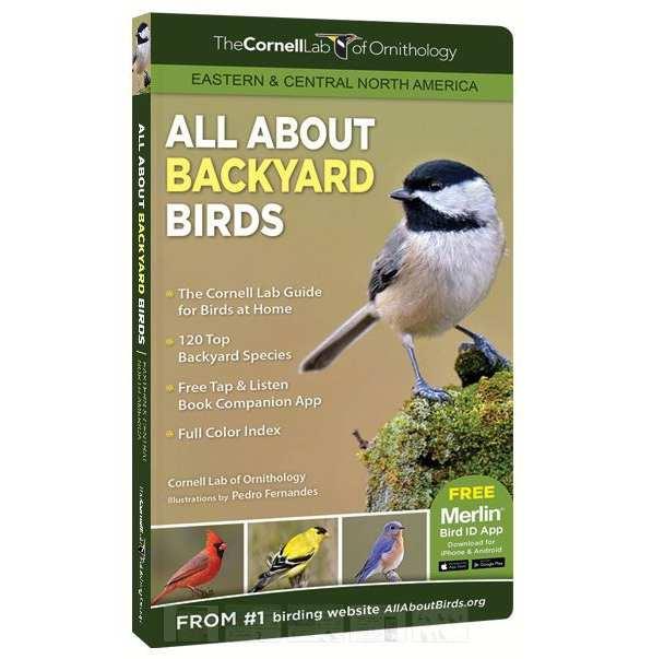 Bird Identification Audio Guide CDs Peterson Birding Field Guides Call At Songbird Garden