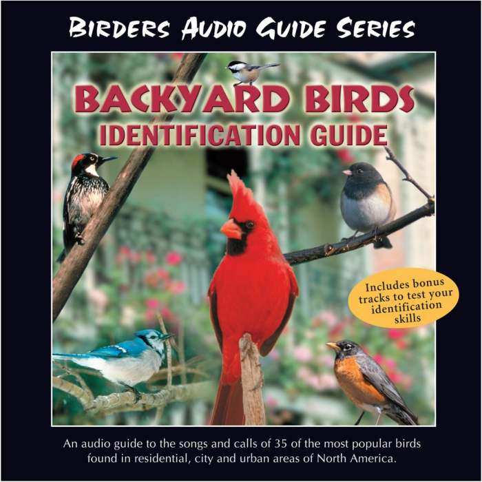 bird identification software cd dvd identification tools for