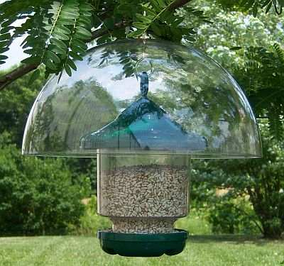 hanging categories tables food sunflower bird feeder hearts steel black wild feeders really