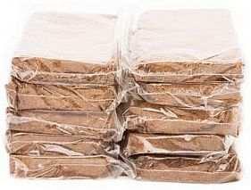 Coconut Coir Growing Medium 250g Brick Bulk 10/Case, Coco
