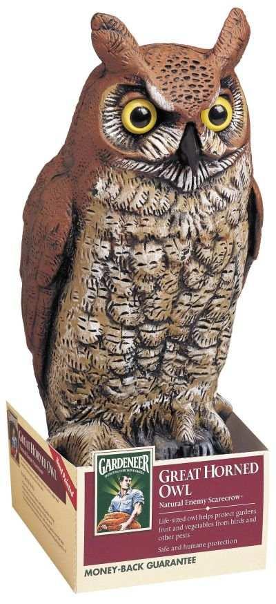 Great Horned Owl Scarecrow Device, Garden Scarecrow Devices At Songbird  Garden