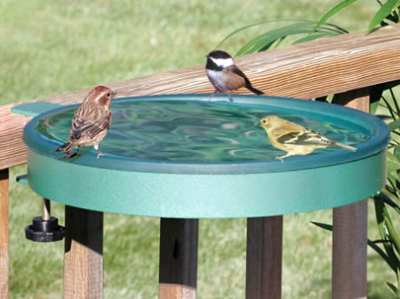 "Erva 14"" Clamp-On Bird Bath"