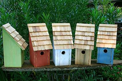 Bluebird Bunkhouse Bird House available in Blue, Green Apple, Natural, Redwood and White colors