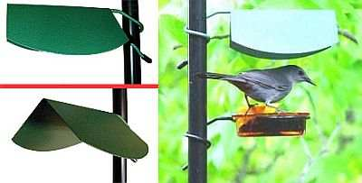 Rain Caonpy to protect glass dish feeders from rain, snow and sun