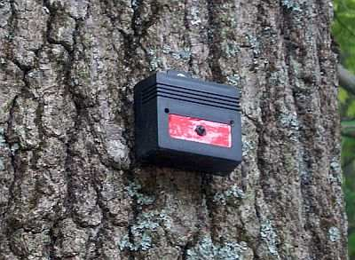 Mount Nite Guard Solar to a tree, post or wall