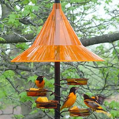 "Oriole Feeding Station - Pole Mount Oriole Weather Hat, 1"" OD Metal Pole w/Twist Ground Socket, and Pole Mount Orange Glass Dishes"