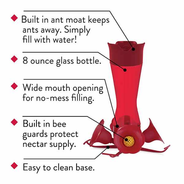 Built in ant moat /& bee guards. 8 oz Pinch Waist Glass Red Hummingbird Feeder