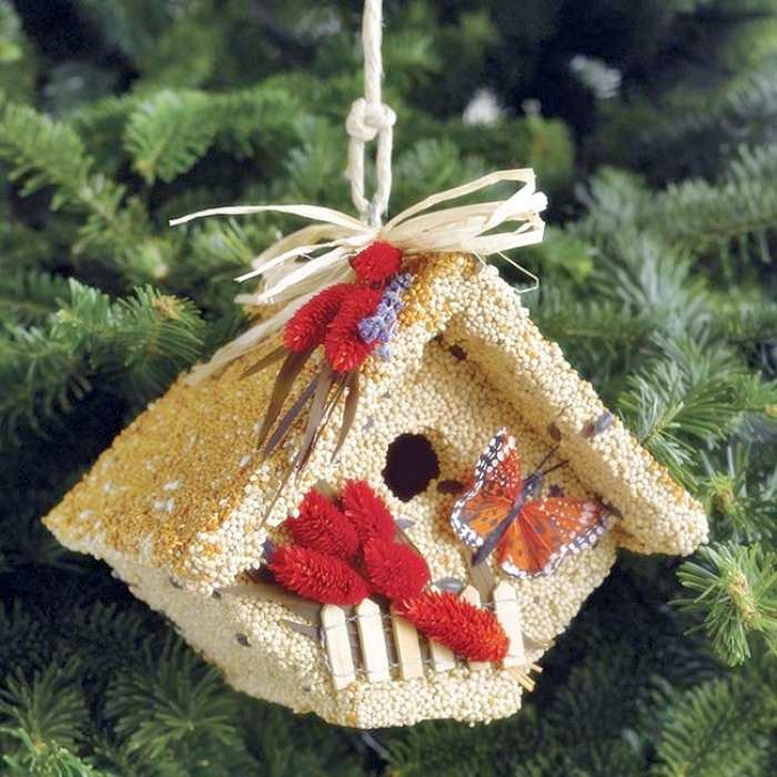 All Season Wren Casita Edible Birdhouse