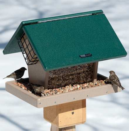 Second Nature 7 Qt. Hopper w/Angled Suet Cages