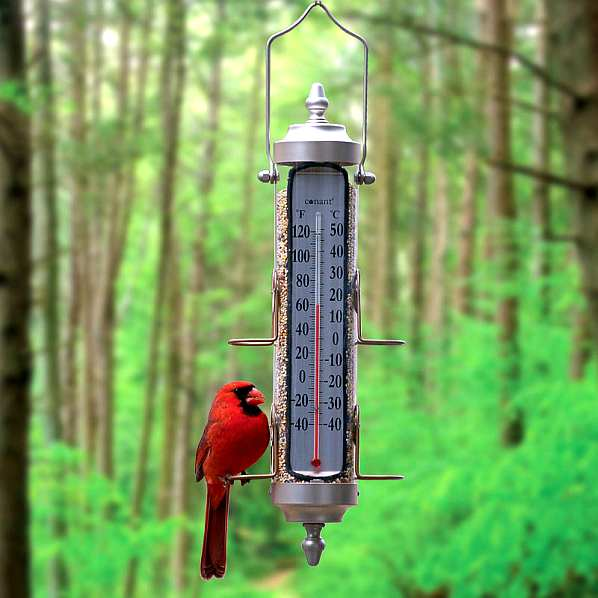 Grande View Bird Feeder Thermometer