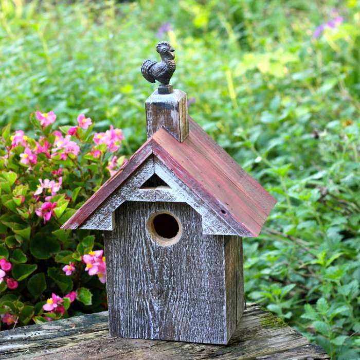 Blues Bird Barn Birdhouse