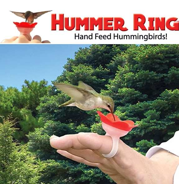 Hummer Ring™ Hand Hummingbird Feeder Red Set of 2