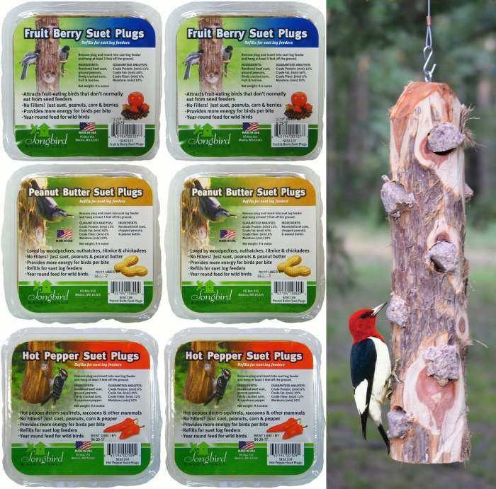 Songbird Cedar 6 Plug Suet Log Feeder w/Suet Plugs