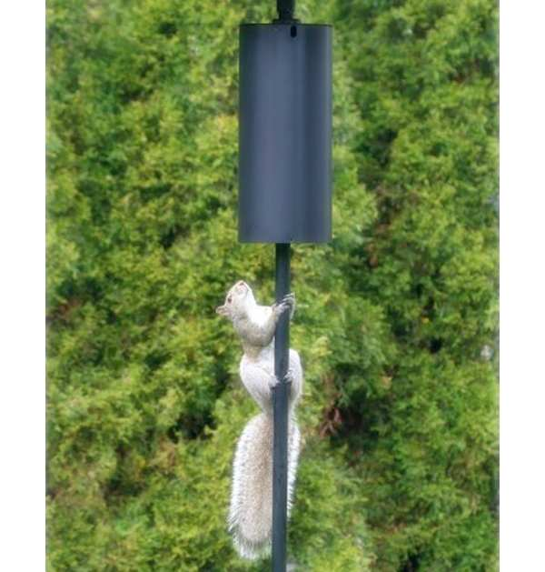 Cylindrical Squirrel Pole Baffle