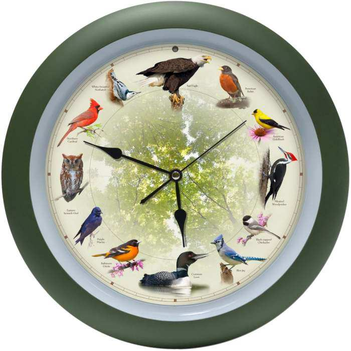 20th Anniversary Singing Bird Clock 13