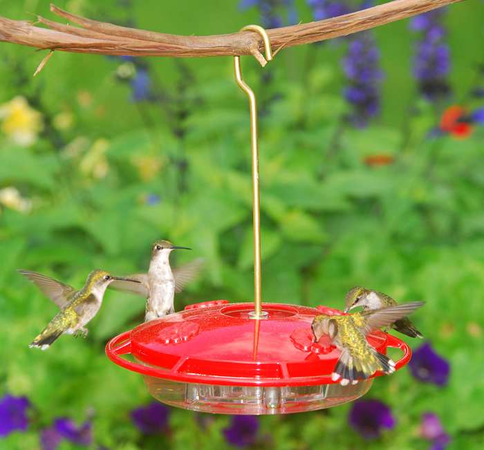 HummZinger Ultra 12 oz. Hummingbird Feeder