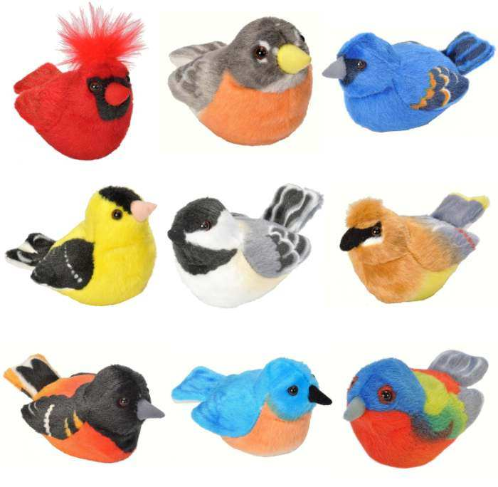Audubon Singing Backyard Bird Collection Set of 9