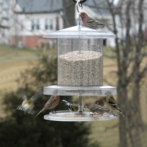 All Weather 6 Quart Weatherproof Bird Feeder