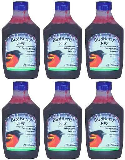 BirdBerry Jelly 20 Ounce Squeezable Bottle 6/Pack