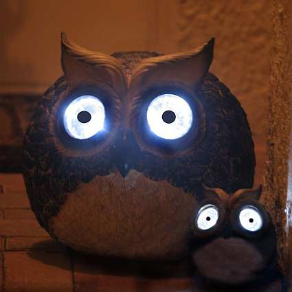 Solar Owl Accent Light Set Of 2 Eco Friendly Solar