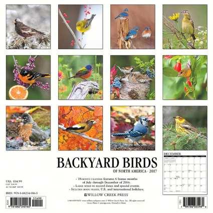 astronomy calendar 2017 back yard - photo #23